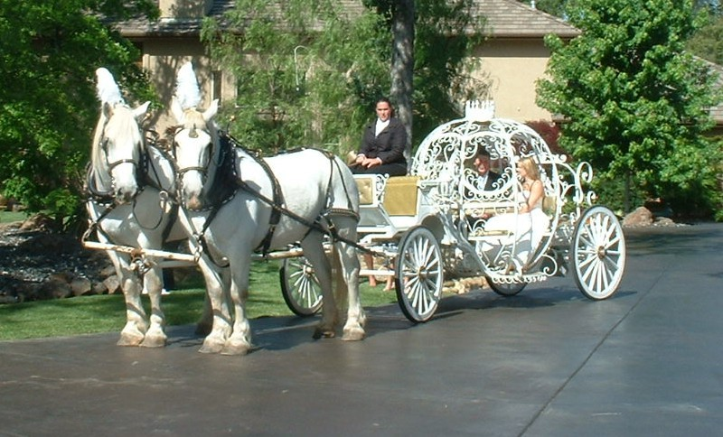 horse carriage rental photo p1