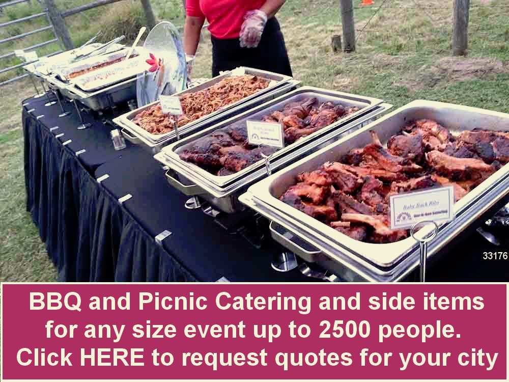 bbq catering picnic catering outdoor on site 33176