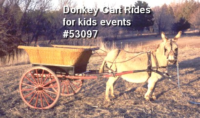donkey cart rides childrens events 53097
