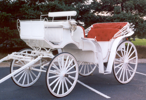 horse carriage rentals white horse carriage rental wedding twin cities mn