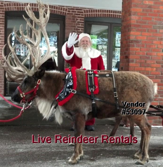 live reindeer rentals christmas santa events 53097