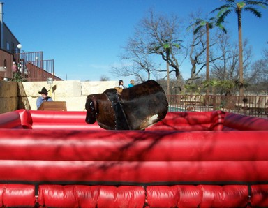 mechanical bull rentals photo2 houston austin texas